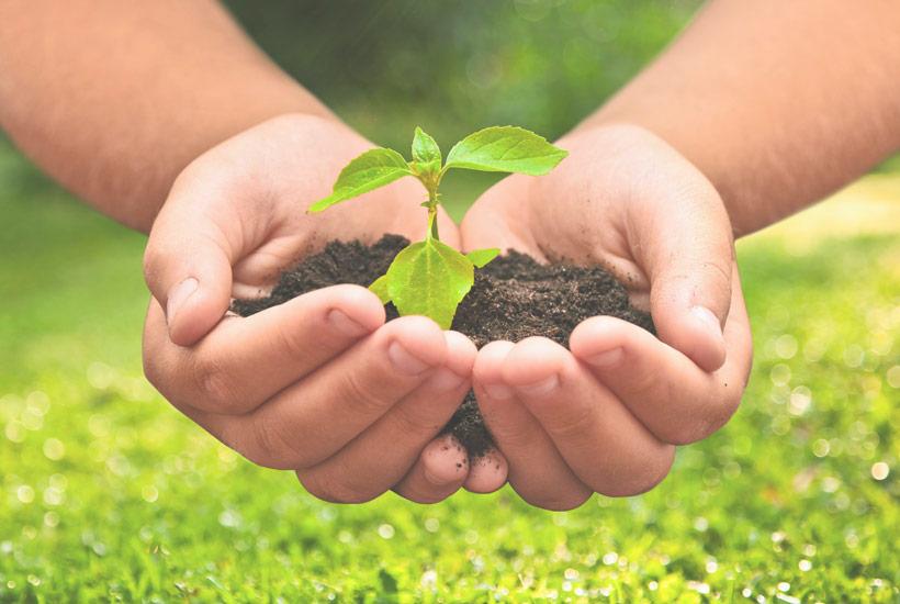 Marke_TRINATURA_Nachhaltigkeit