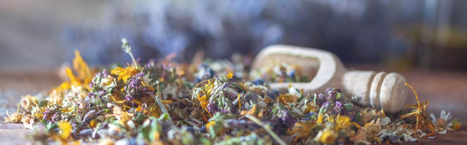 Feine und gesunde Teekräuter