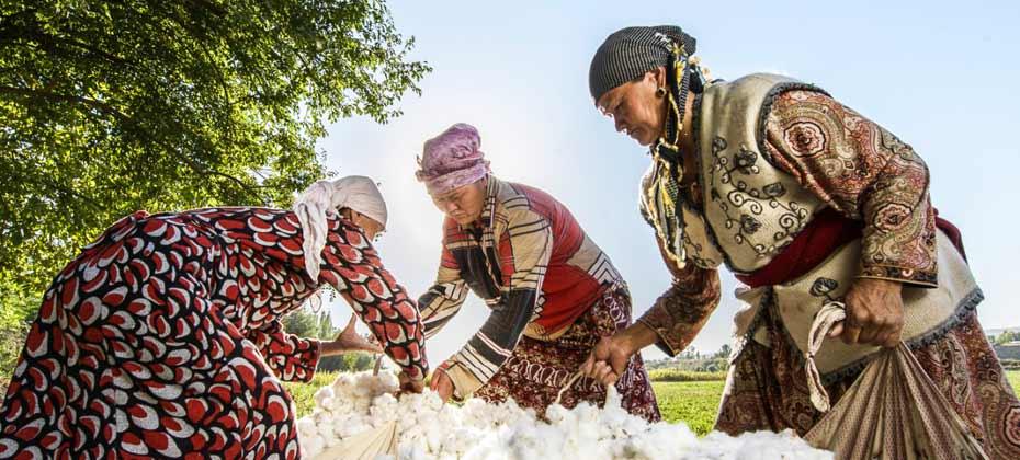 Marke-COTONEA_herkunftsland-bio-baumwolle-kirgistan