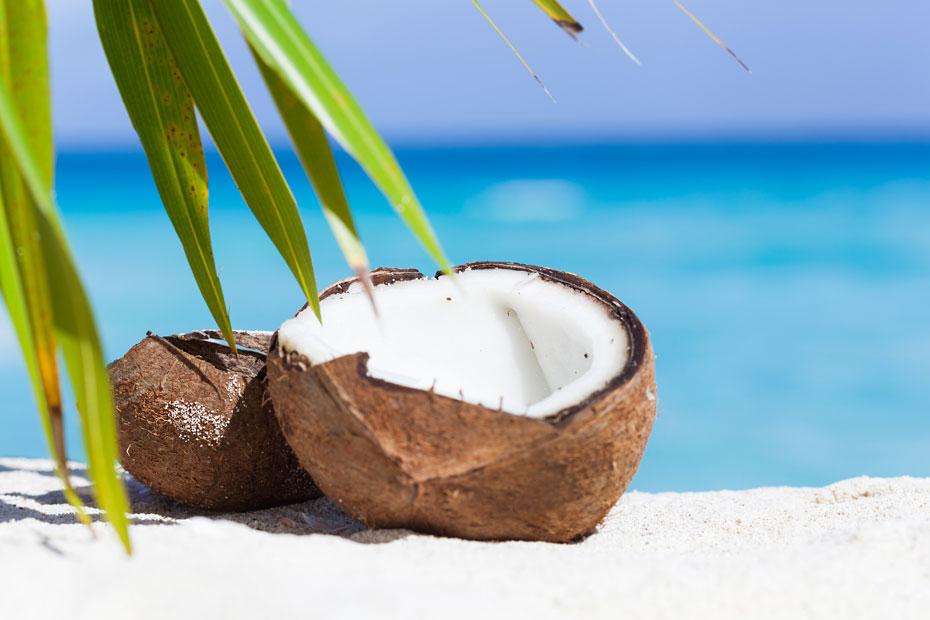 Die Kokosnuss mit ihrem köstlichen Inhalt.