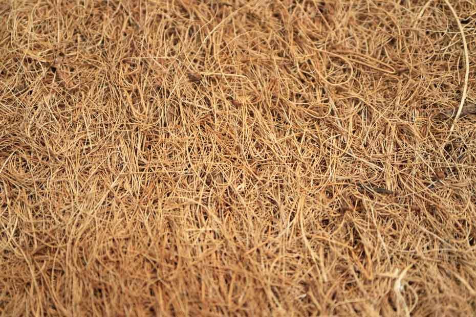 Kokosfasern werden zu Matten verarbeitet, und dienen als Matratzen-Einlagen.