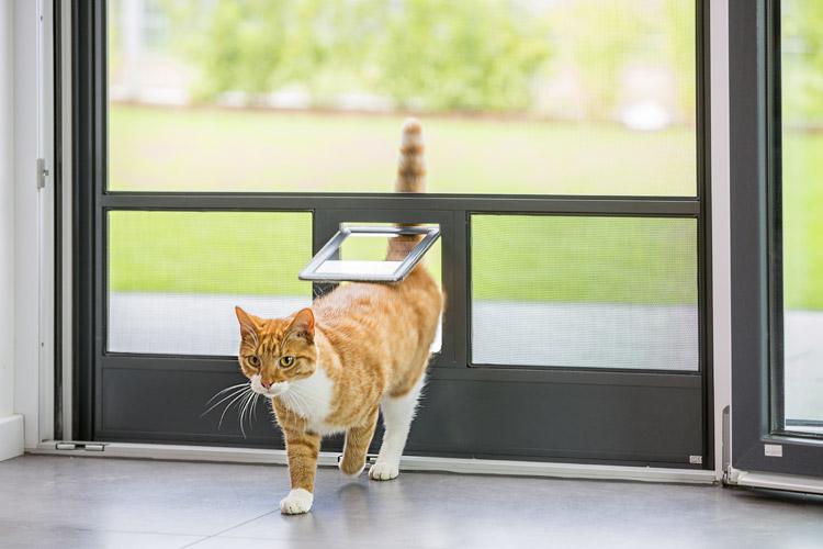 NEHER-Insektenschutz_Sonderlösungen_Katzenklappe